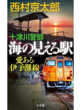 十津川警部海の見える駅 愛ある伊予灘線