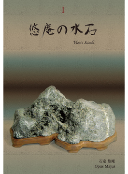 悠庵の水石 1