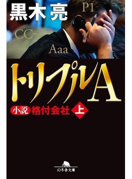【全1-2セット】トリプルA(幻冬舎文庫)