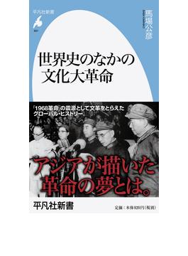 世界史のなかの文化大革命(平凡社新書)