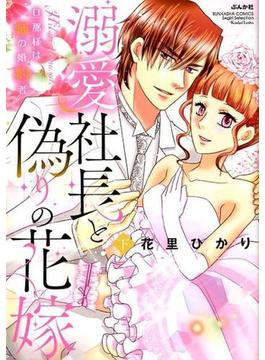 溺愛社長と偽りの花嫁 下 旦那様は姉の婚約者 (BUNKASHA COMICS)