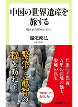 中国の世界遺産を旅する 響き合う歴史と文化(中公新書ラクレ)