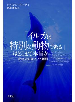 「イルカは特別な動物である」はどこまで本当か 動物の知能という難題