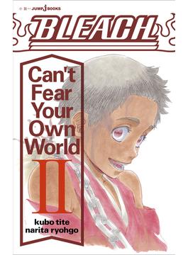 BLEACH Can't Fear Your Own World II (JUMP jBOOKS)