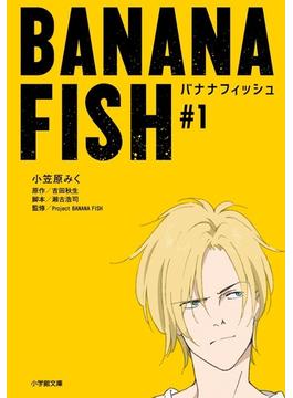 BANANA FISH (小学館文庫)