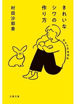きれいなシワの作り方 淑女の思春期病(文春文庫)
