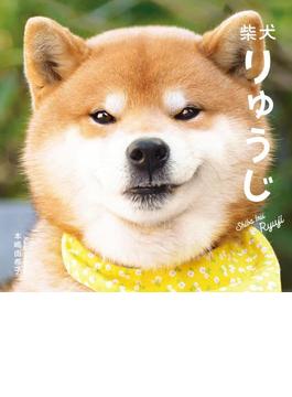 柴犬りゅうじ