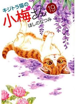 キジトラ猫の小梅さん 19(ねこぱんちコミックス)