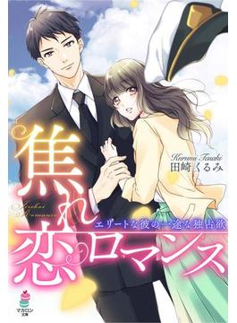 焦れ恋ロマンス~エリートな彼の一途な独占欲(マカロン文庫)