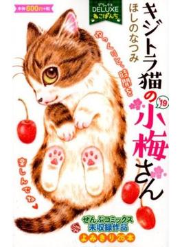 DXねこぱんち キジトラ猫の小梅さん'19
