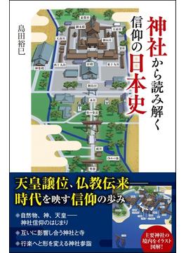 神社から読み解く信仰の日本史(SBビジュアル新書)