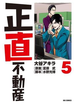 正直不動産 5(ビッグコミックス)