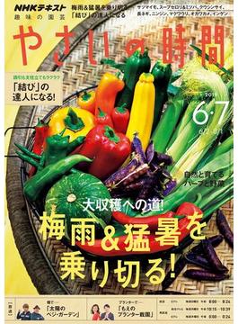 NHK 趣味の園芸 やさいの時間 2019年6月・7月号(NHKテキスト)