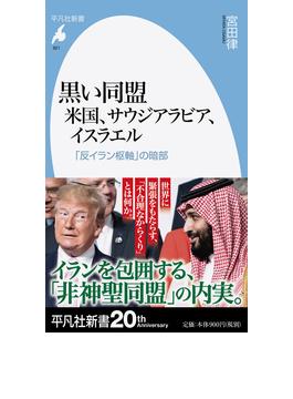 黒い同盟 米国、サウジアラビア、イスラエル 「反イラン枢軸」の暗部(平凡社新書)