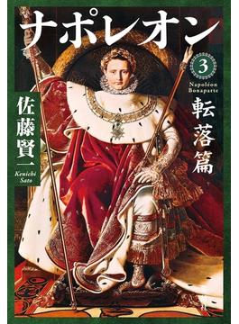 ナポレオン 3 転落篇(集英社文芸単行本)