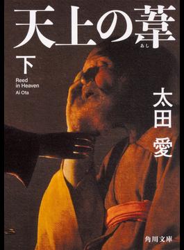 天上の葦 下(角川文庫)