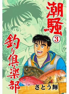 潮騒 釣り倶楽部 3(マンガの金字塔)