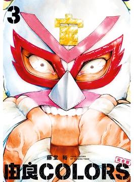 由良COLORS完全版 第3巻(ビームコミックス)
