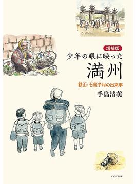 少年の眼に映った満州 鞍山・七嶺子村の出来事 増補版