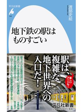 地下鉄の駅はものすごい(平凡社新書)