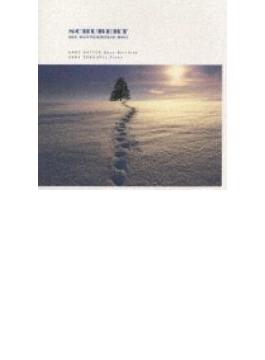 Winterreise: Hotter(Bs)