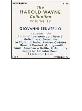 Vol.19: Zenatello