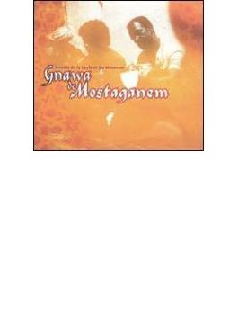Maghreb (North Africa) - Gnawafrom Mostaganem