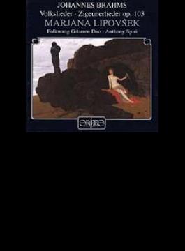 Songs: Lipovsek(Ms)