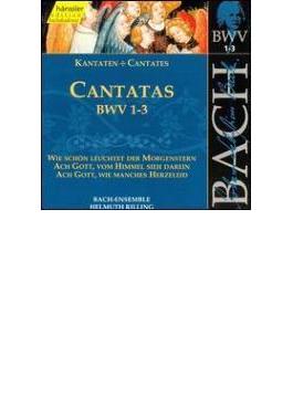 Cantatas.1-3: Rilling / Stuttgartbach Collegium Ensemble