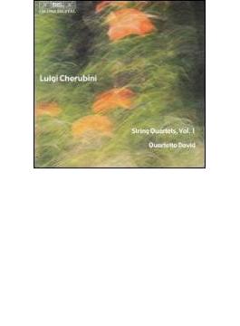 String Quartet.1, 2: Quartetto David