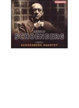 (4枚分)シェーンベルク:弦楽のための(室内楽)作品全集/シェーンベルク・クヮルテット
