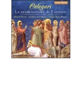 (CD&CD-ROM/1枚分価格)カレガリ:宗教劇「ラザロの昇天」 ギウア(S)他/ブレッサン/アカデミア・デ・リ・ムジチ