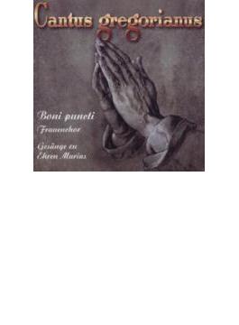 Boni Puncti Cantus Gregorianus-frauenchor