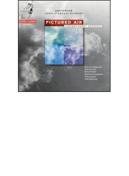 ピクチャード・エア 現代のリコーダー協奏曲集  アムステルダム・ルッキ・スターダストQ
