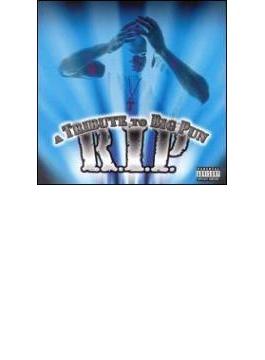 Ripa - Tribute To Big Punisher