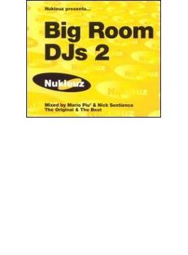 Big Room Dj's Volume 2