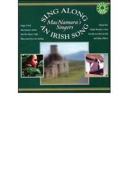 Sing Along An Irish Song