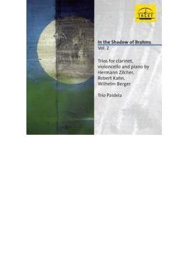 Works For Clarinet Trio-zilcher, Kahn, Berger: Trio Paideia