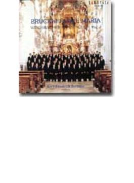 ブルックナー:アヴェ・マリア/ウィンズバッハ少年合唱団 II