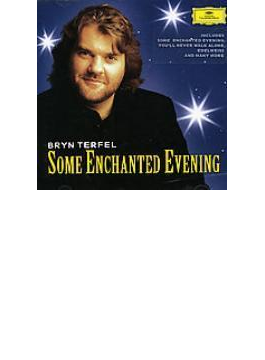 Bryn Terfel: Some Enchanted Evening-the Best Of The Musicals