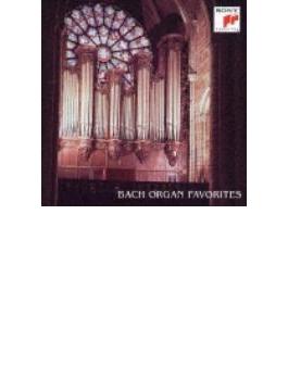 Organ Works: 松居直美