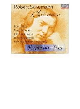 ピアノ三重奏曲全集、他 ハイペリオン・トリオ(4CD)