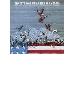 Skies Of America: アメリカの空