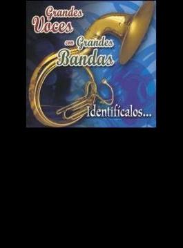 Grandes Voces Con Grandes Band