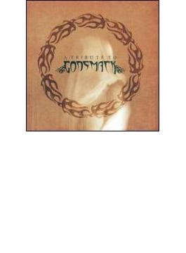 Tribute To Godsmack