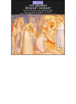 グレゴリオ聖歌集-リゾネット・イントネット/ヴェネツィア・スコラ・グレゴリアーナ