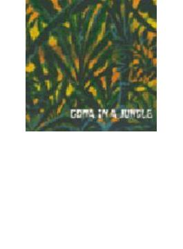 In A Jungle
