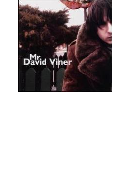 Mr David Viner