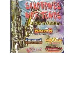 Saxofones Nortenos