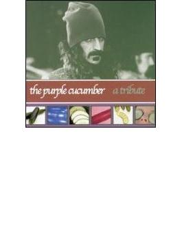 Purple Cucumber - A Tribute Tofrank Zappa